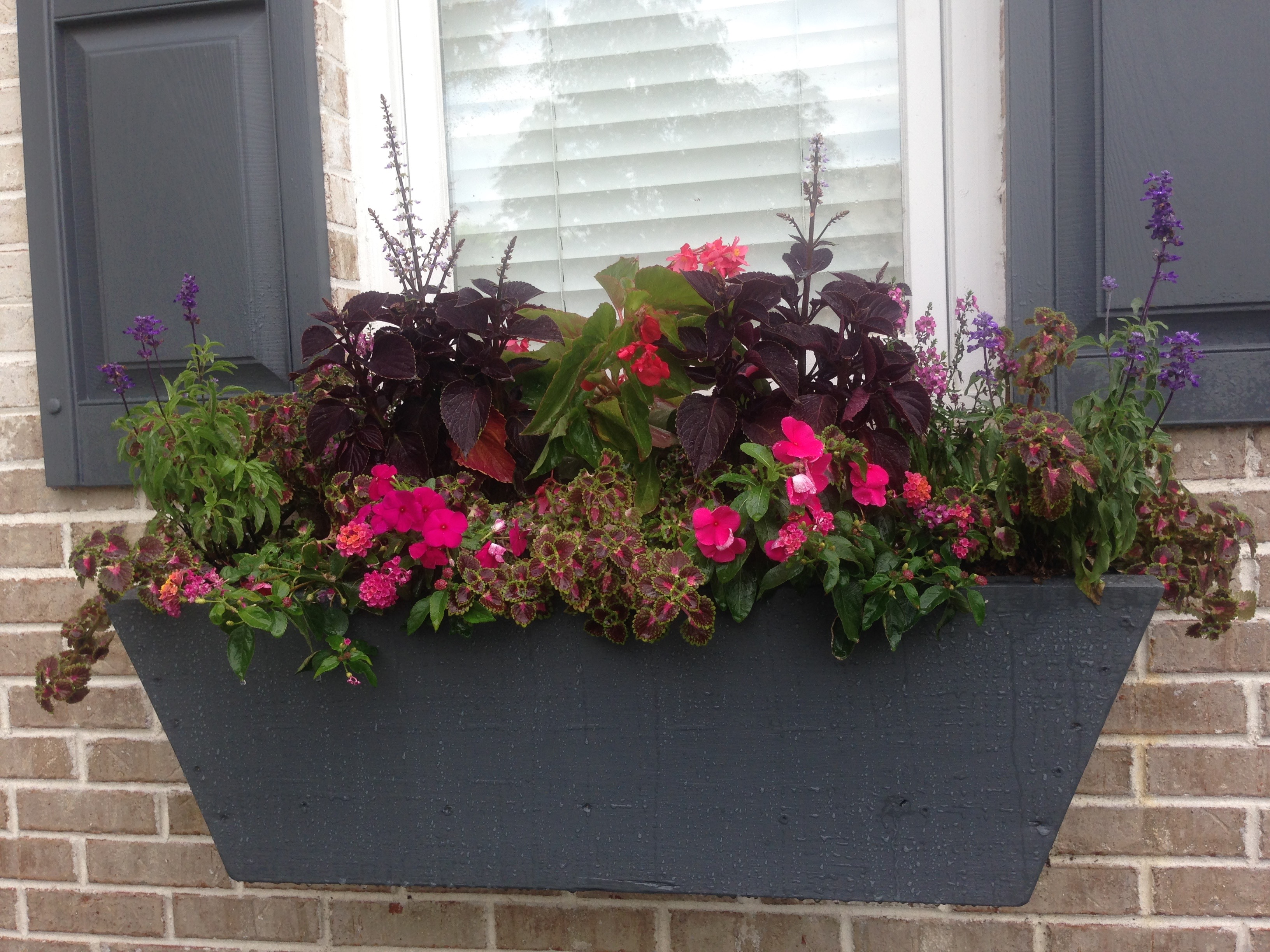 Featured Topics Indianapolis Landscape pany
